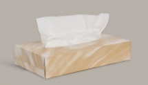 Facial Tissues - Hotel Pack