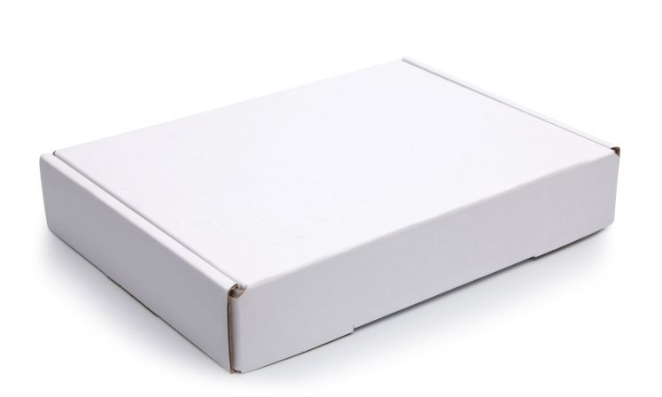 10inch Plain White Corrugated Pizza Boxes