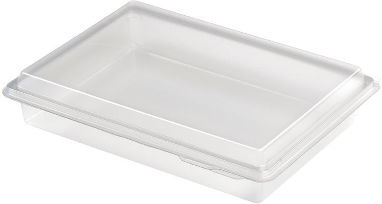 Clear Plastic Nibble Boxes